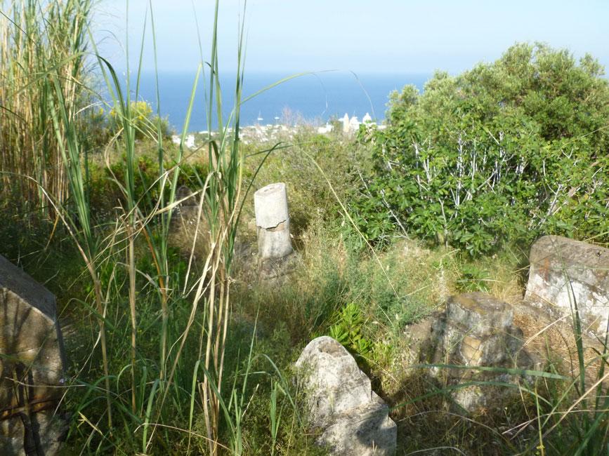 12 Stary cmentarz miesci sie wysoko nad miasteczkiem i ginie w roslinnosci