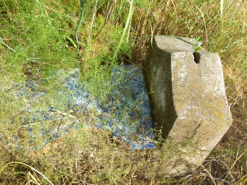 13 groby zarosniete sa roslinami