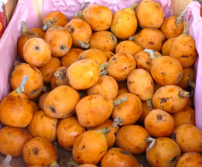 14 I owoce