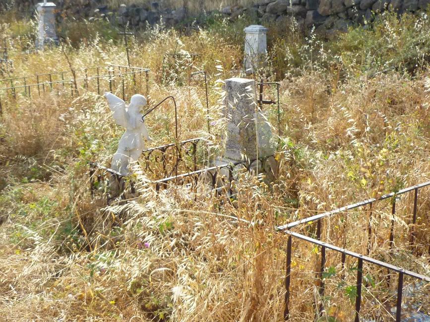 05 Opuszczone zarosniete groby