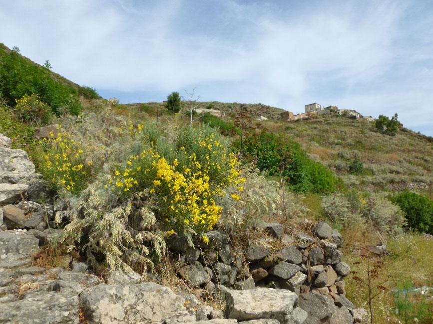 03 Widac zabudowania wioski Montagna