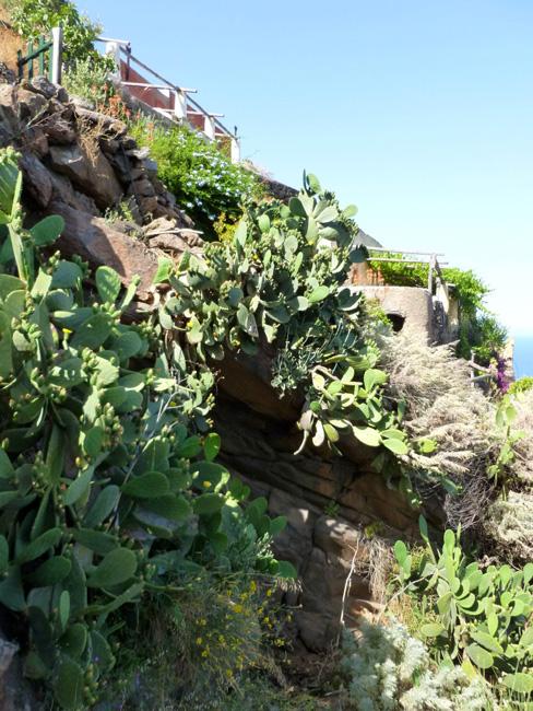 10 Dom na skale