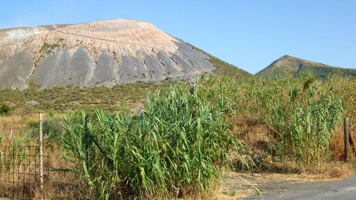 10 Wulkan przez trzciny