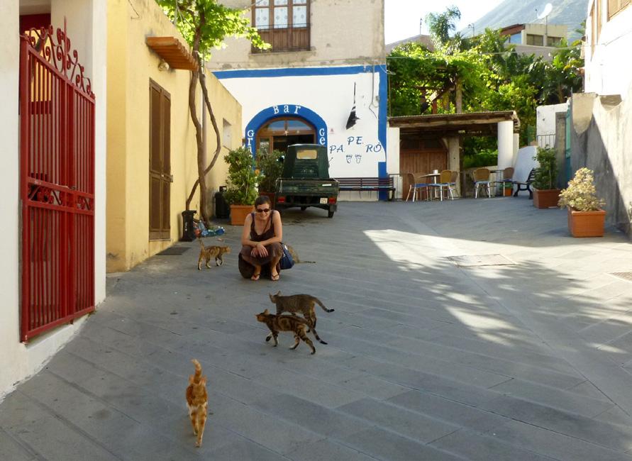 09 Wszystkie koty z Rinelli witaja sie z Barbara