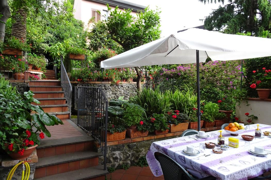 Stół wśród zieleni