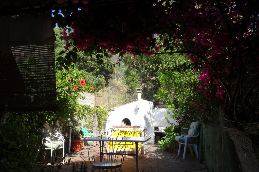 Ogród i grill